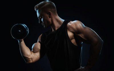 Catabolismo e Anabolismo